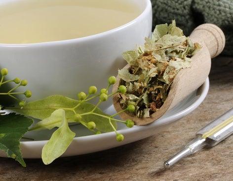 kantaron çayı ve bitkisi