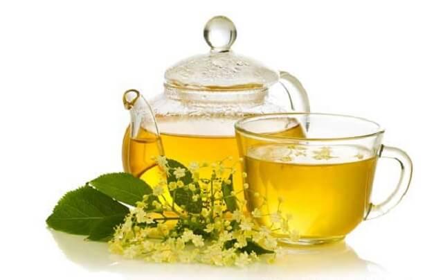 karahindiba çayı ve çiçeği