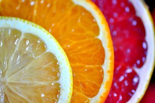 limon portakal greyfurt dilimleri