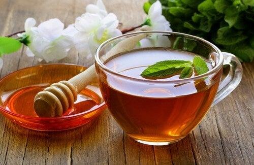 Bal, Sirke ve Çayla Hazırlanan Arındırıcı Karışım