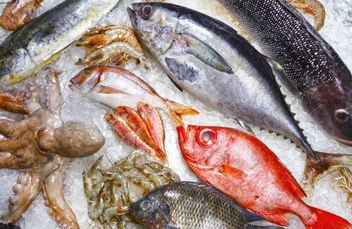 Uzak Durmanız Gereken 5 Balık