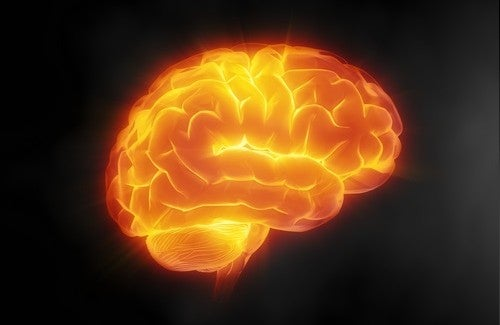 Beyin Sağlığı İçin Dikkat Etmemiz Gereken 7 İpucu