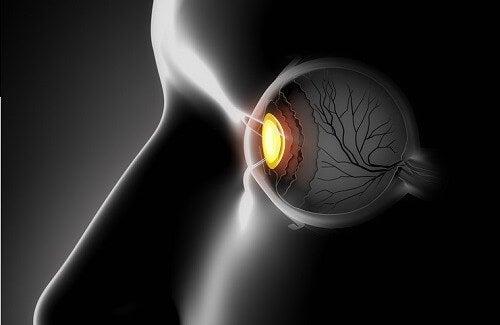 Göz Sağlığı İçin Faydalı İçecekler