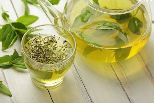 yeşil çay cam demlik