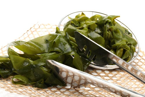 Seaweed tr