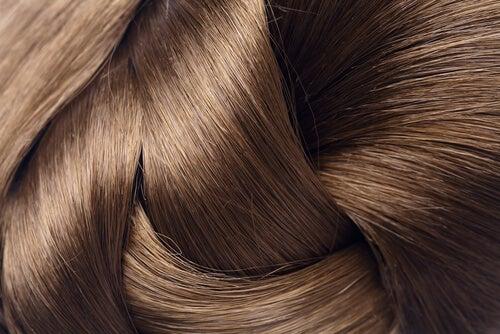 Shiny-hair tr