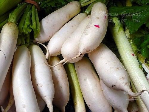 Turnips tr