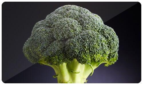 Brokoli ve Kabak ile Yapılan Tarifler