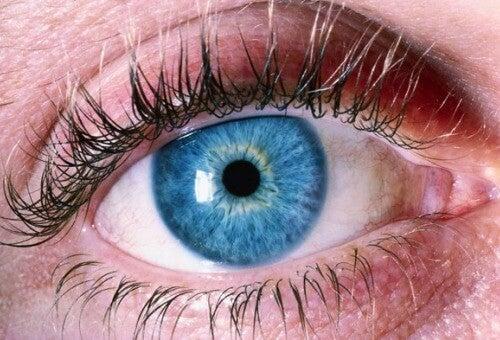 Alzheimer Hastalığını Teşhis Etmek İçin Gözlerinize Bakın