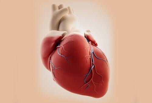 kalp krizi semptomları