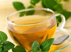 yeşil-çay-5