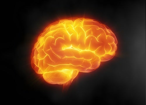 Brain-care