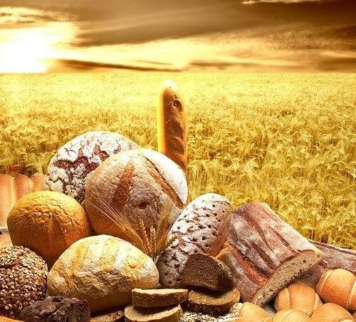 çeşitli ekmekler