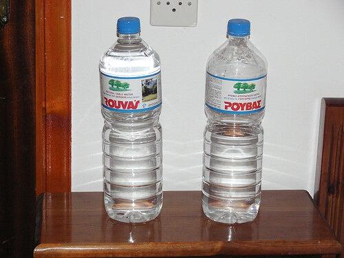 böbrekler için su