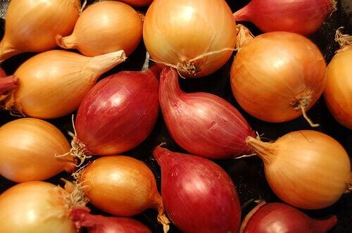 soğan doğal afrodizyak