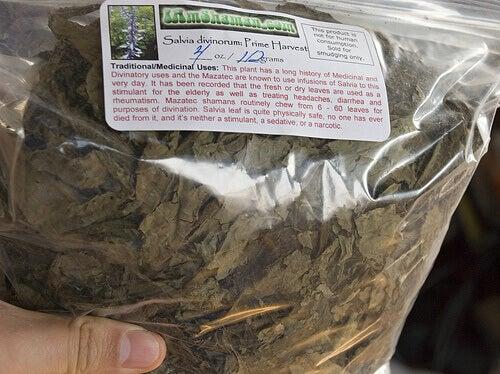bir paket ada çayı