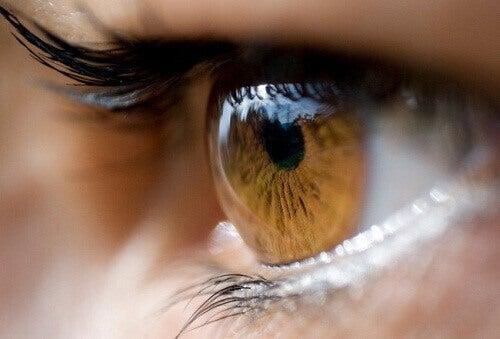 Göz Renginiz Sizin Hakkınızda Ne Anlatıyor?