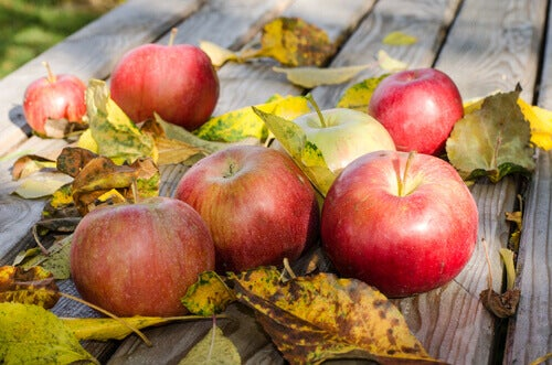 tahta masa elmalar sonbahar