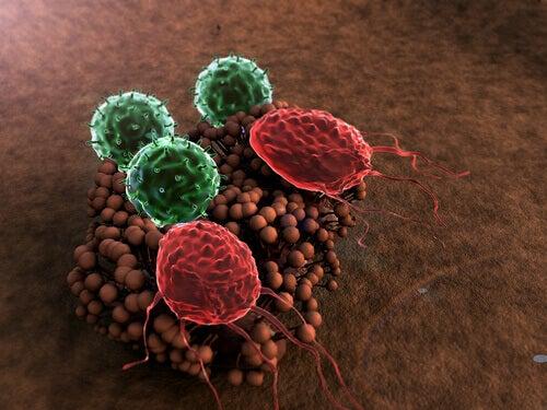 Zayıflamış Bir Bağışıklık Sisteminin 4 Belirtisi