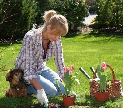 bahçe bakımı yapan kadın ve köpeği
