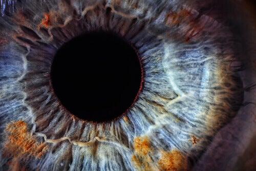Gözlerin Sağlık Durumuyla İlişkisi Nedir