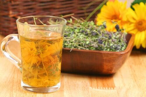 Vücudu Toksinlerden Arındıran 4 Çay