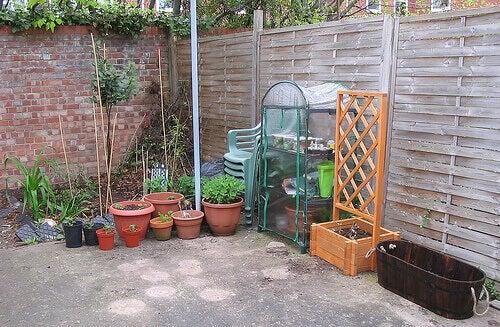 organik sebze bahçesi oluşturmak