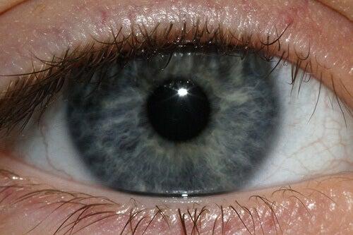 blue-eye-Jenn-Durfey