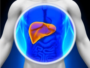 yağlı karaciğer