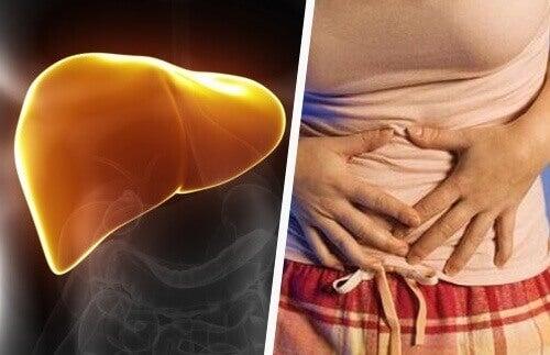Karaciğer Problemleri İle İlgili 18 Belirti