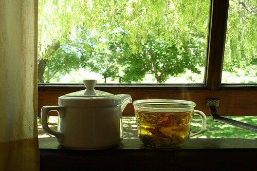 demlik bitki çayı orman manzarası