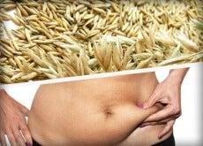 1-tahıllar