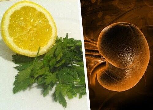Limon ve Maydanozla Böbreklerinizi Arındırmak