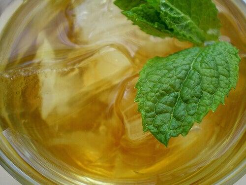 taze naneyle yapılmış soğuk çay