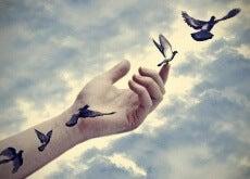 1-kuşlar