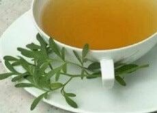 1-sedefotu-çayı