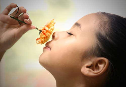 çiçek koklayan çocuk