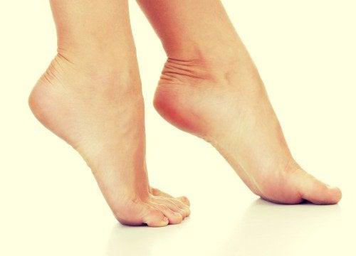 3-ayak-parmakları