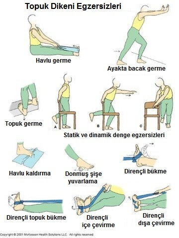 4-taban-egzersizleri