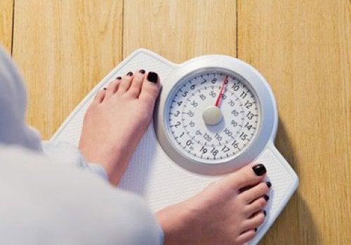 5-kilo-vermek
