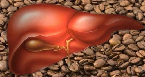 Günde 3 Bardak Kahve İçmek Sağlıklı mı?