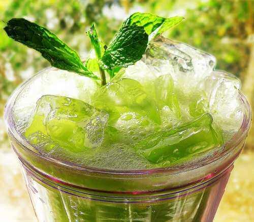nane-salatalık-içecek