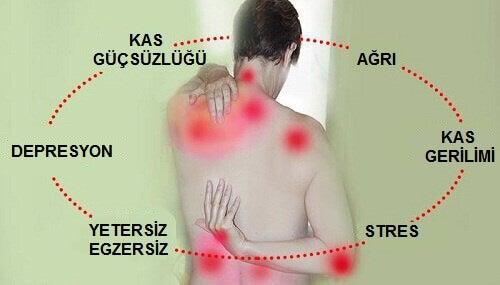 Fibromiyalji Tedavisi İçin Doğal Yöntemler