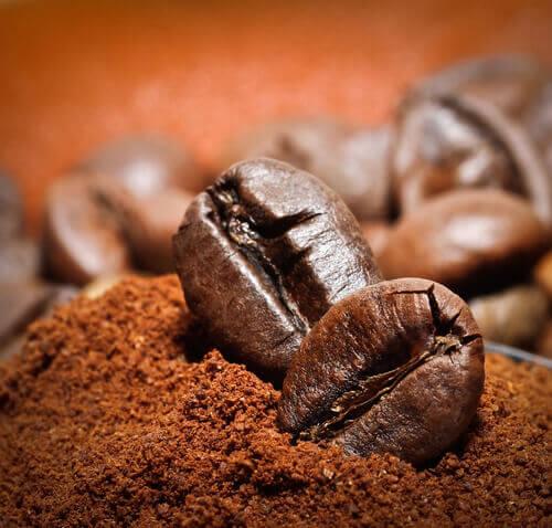 kahve-çekirdekleri