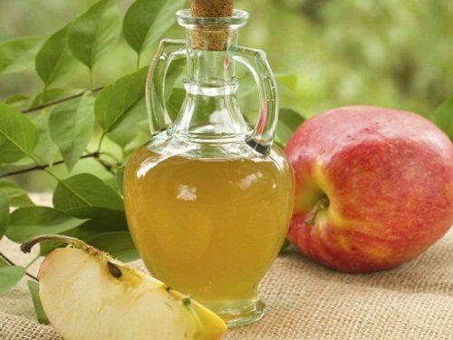 yağ elma