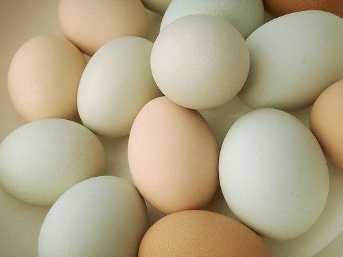 yumurta yemek