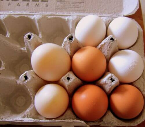 yumurta tüketmek
