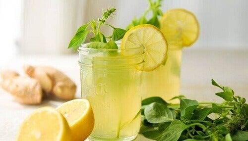zencefil-limon-nane