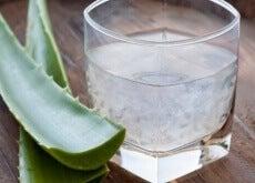 aloe suyu