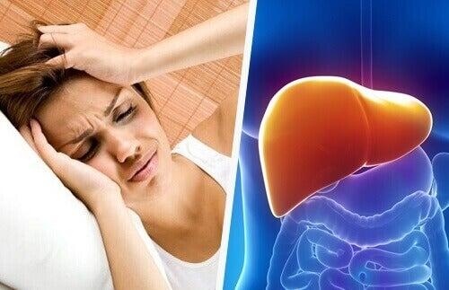 başağrısı-karaciğer